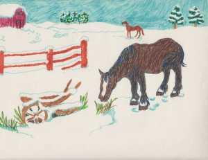 horse-snowyfield